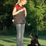 The Importance Of Basic Dog Commands